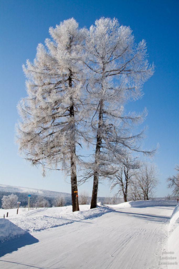 zima na Kvildě