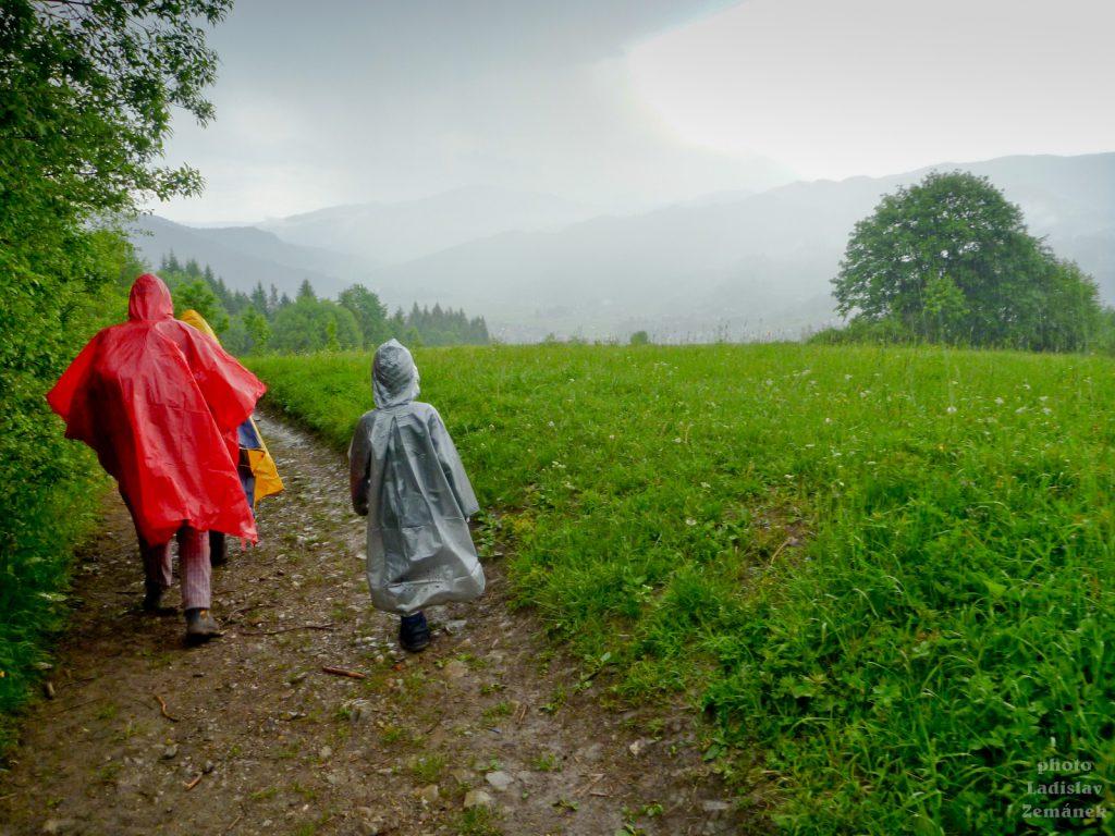 Déšť v Pieninách
