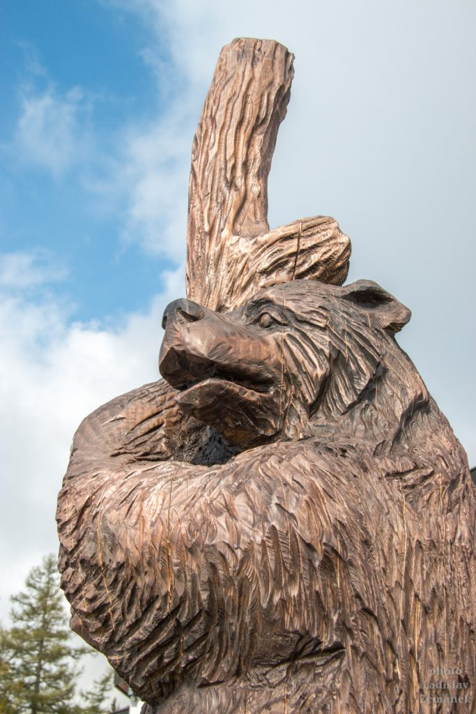 Hrebienok - medvěd