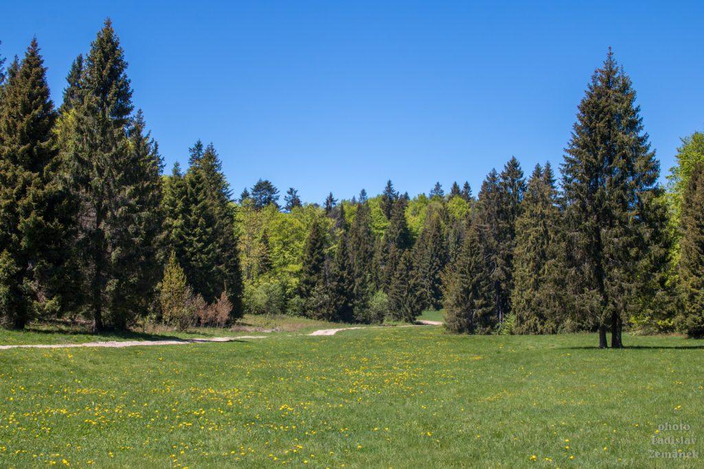 Geravy - Nad Zejmarskou dolinou