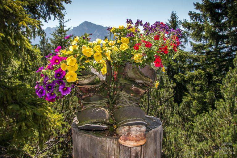květináč z pohorek