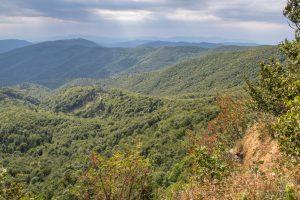 Jarabá skala - výhled