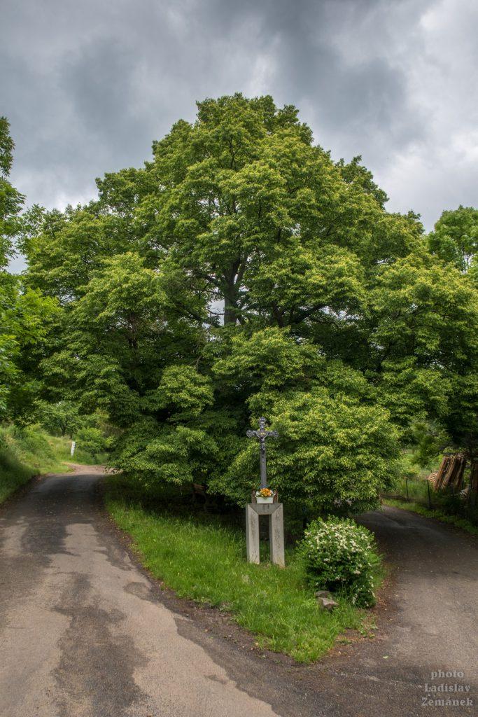 Výlet - litoměřice - Plešivec - Kamýk - Porta Bohemica