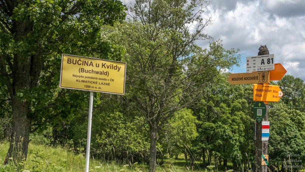 Hraniční pásmo - Šumava - Bučina