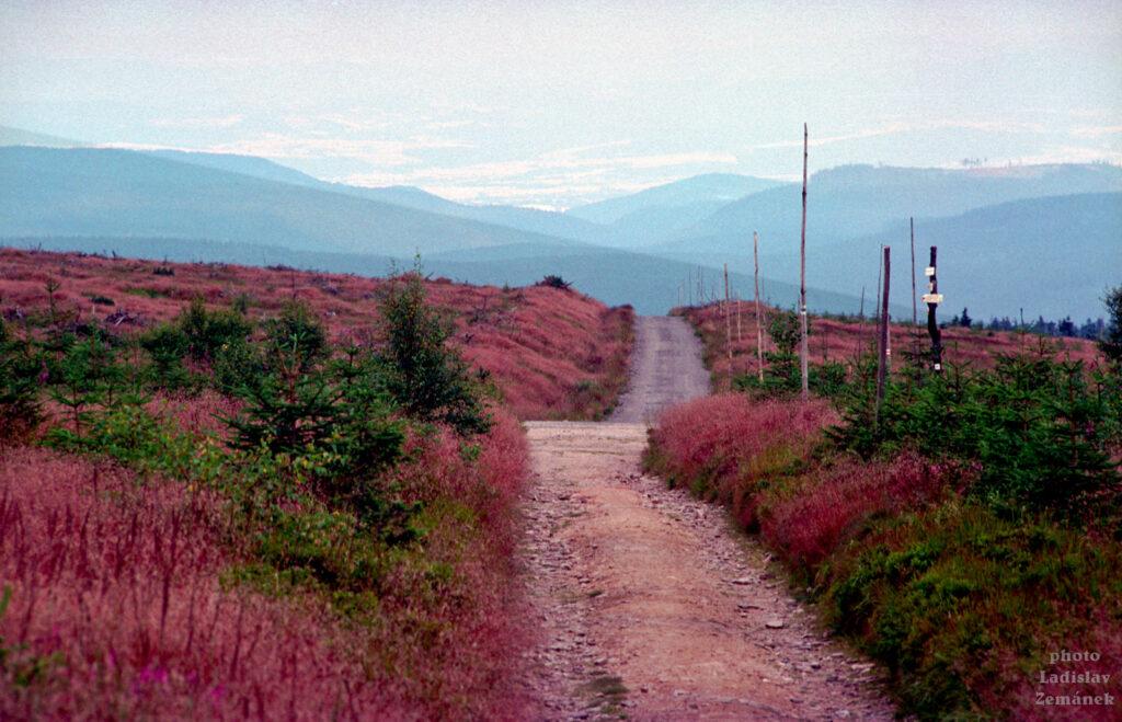 Orlické hory - Velká Deštná (1994)