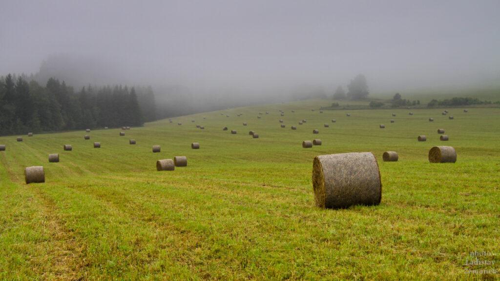 Deštné v Orlických horách - podzimní louka