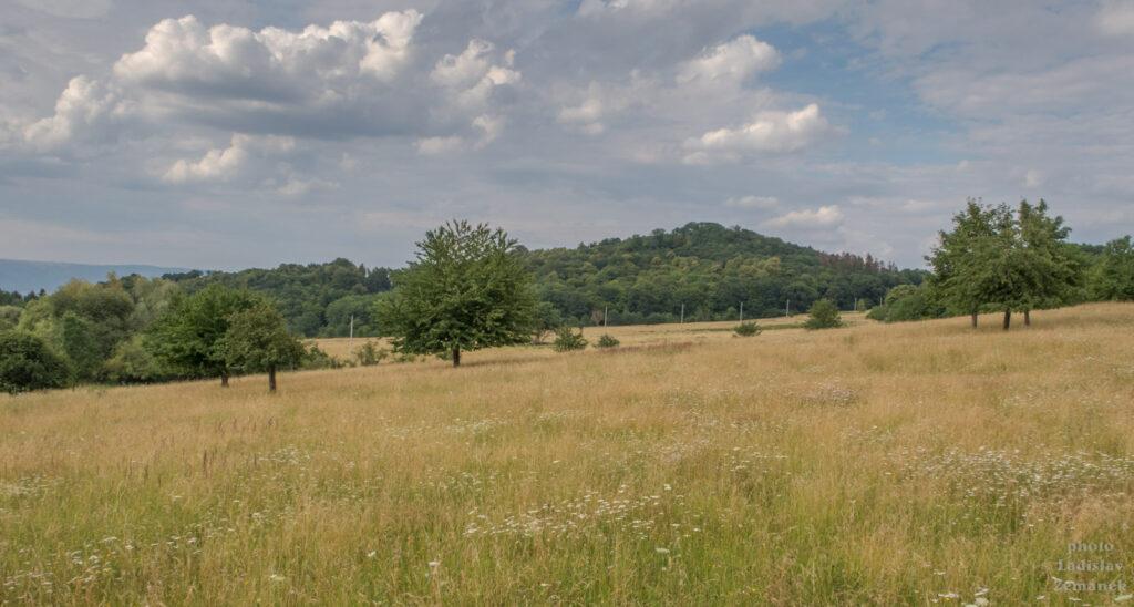 Milešovka - výhled od Černčic