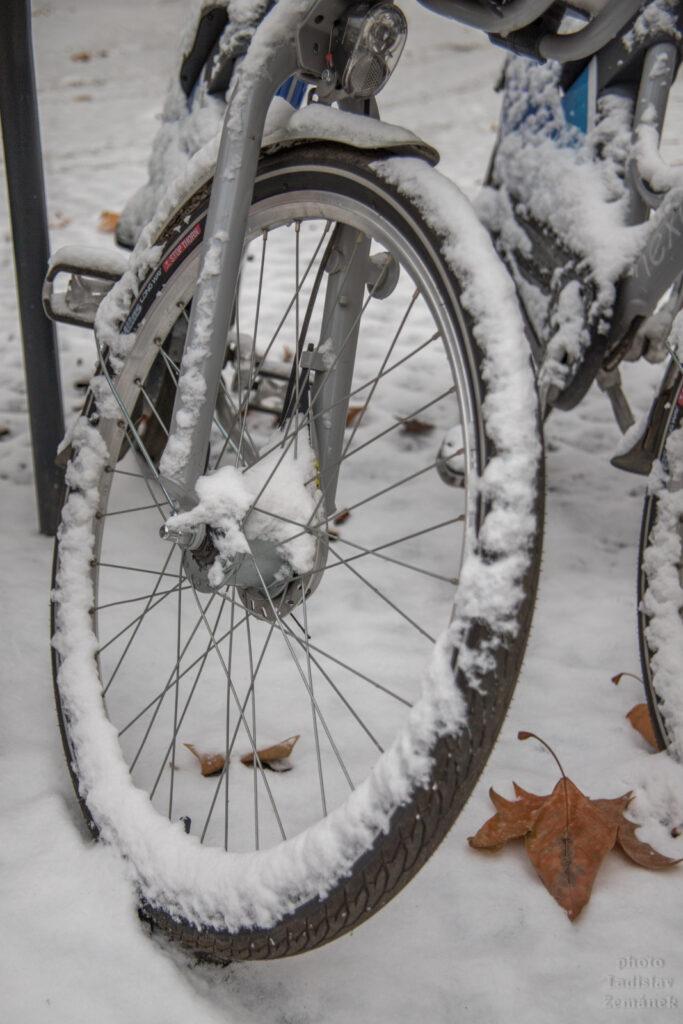 Zasněžená sdílená kola