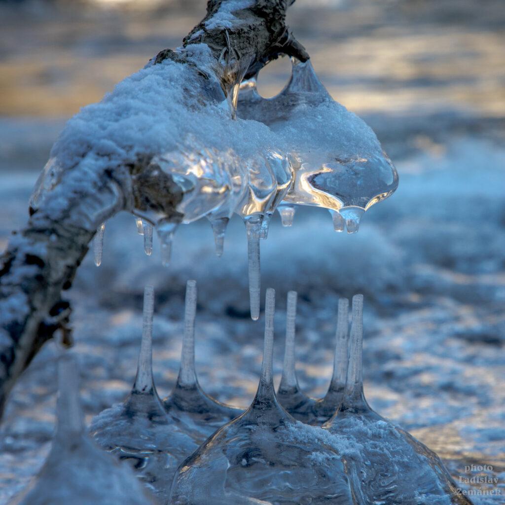 Ledové sochy na břehu Sázavy
