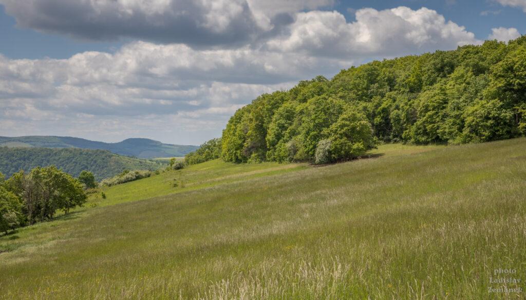 Krajina v Českém krasu