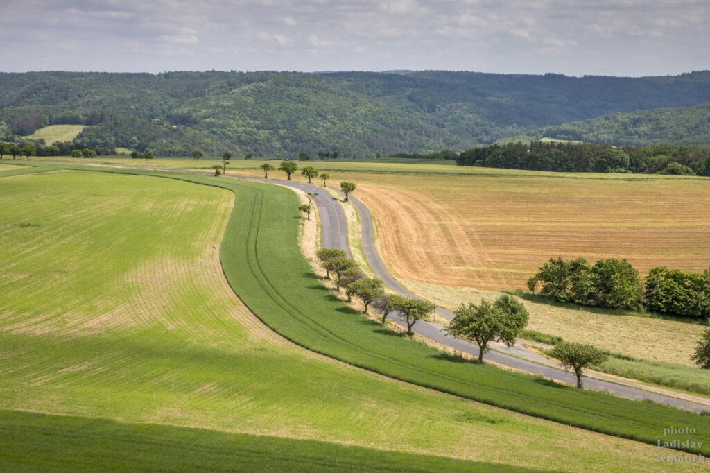 rozhledna Velká Buková - výhled