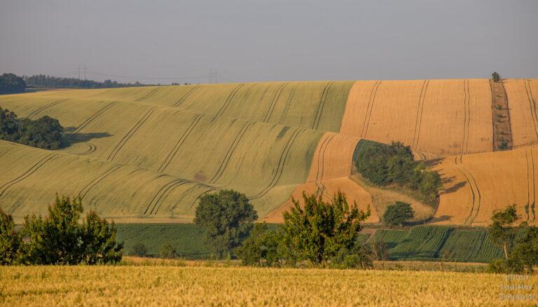 Šardice - Moravské Toskánsko