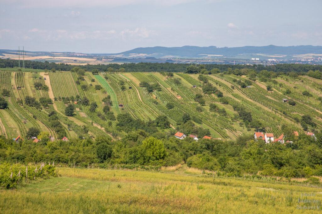 Moravské Toskánsko - rozhledna Vyšicko