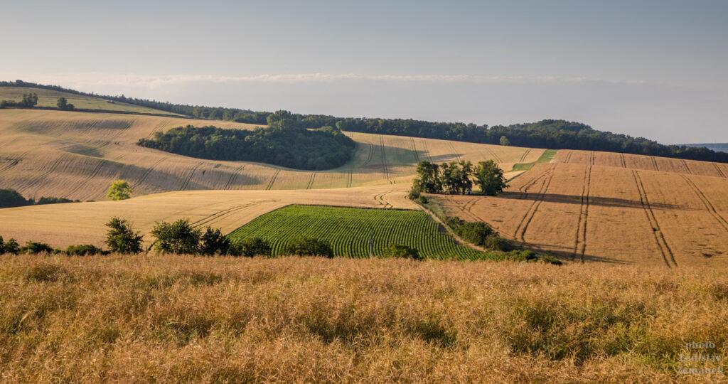 Moravské Toskánsko - Svatobořice-Mistřín