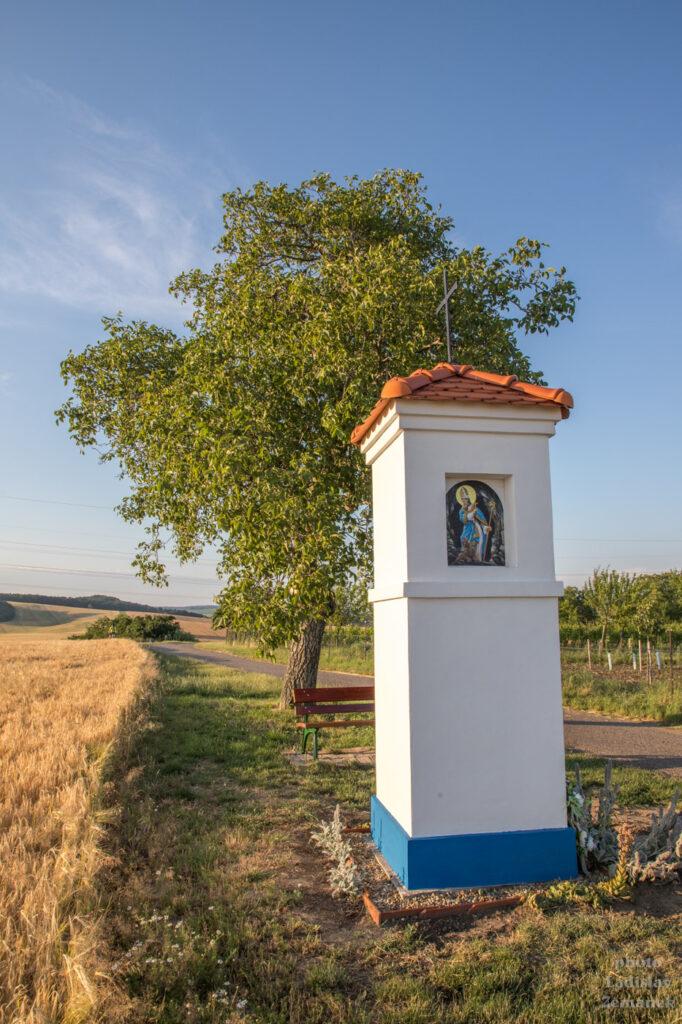 Svatobořice-Mistřín - na Mutěnické cyklostezce