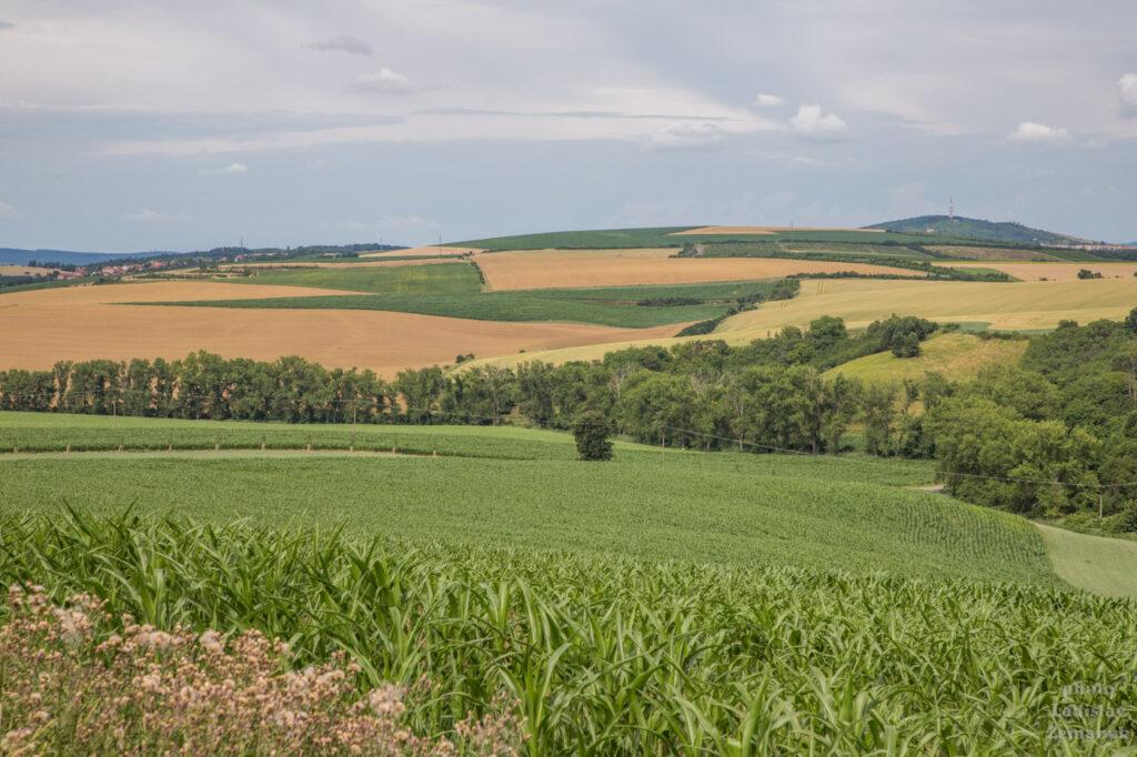 Moravské Toskánsko - Hovoranské louky