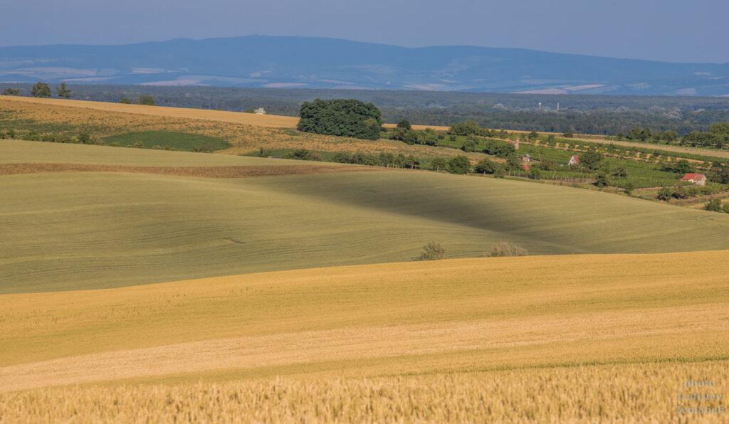 Moravské Toskánsko - okolí Stavěšic