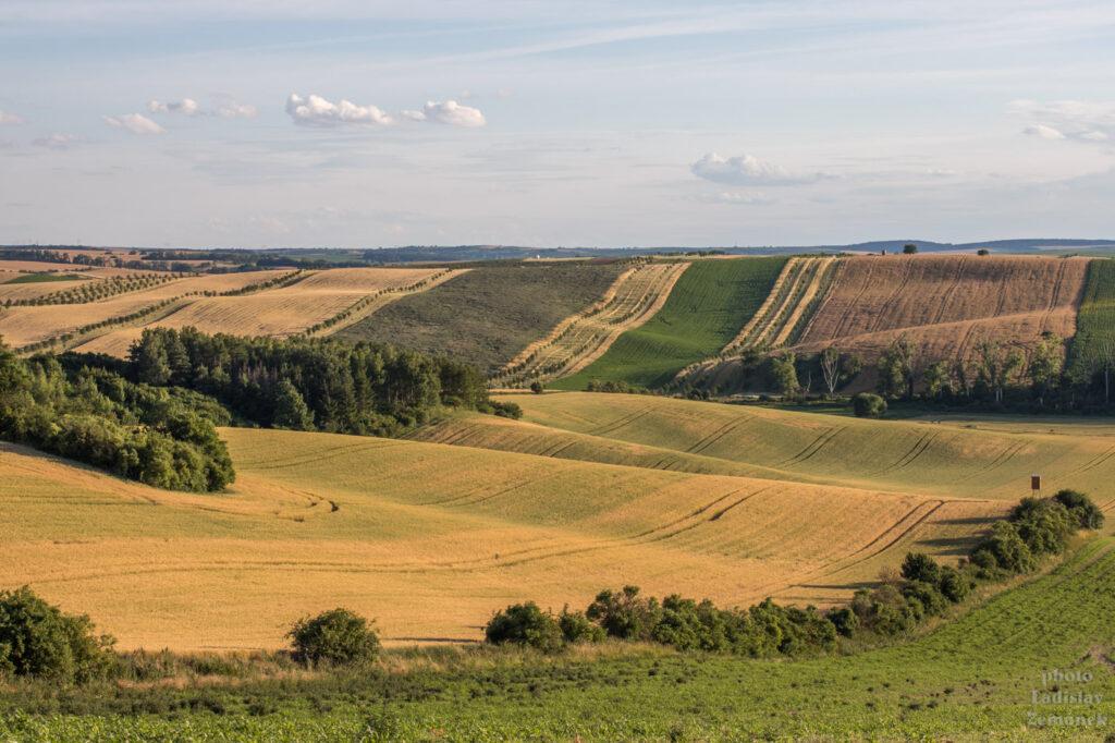 Moravské Toskánsko - šardické biopásy - výhled