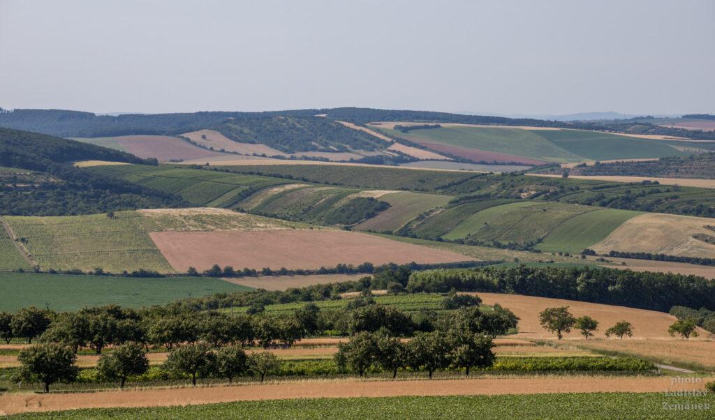 rozhledna Stezka nad vinohrady - Kobylí vrch - výhled