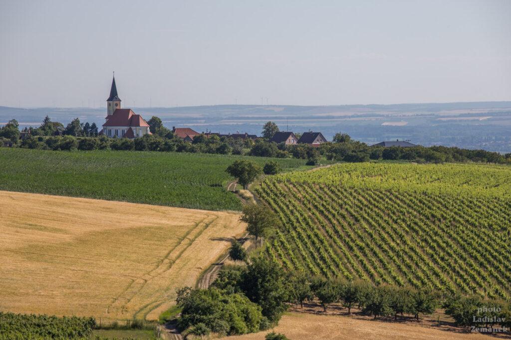 rozhledna Stezka nad vinohrady - Kobylí vrch - výhled na Vrbice