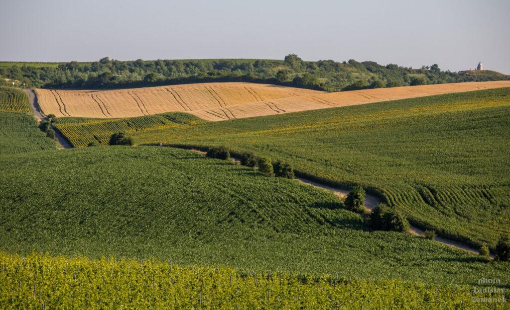 Výhled na Hradištěk přes zvlněná pole