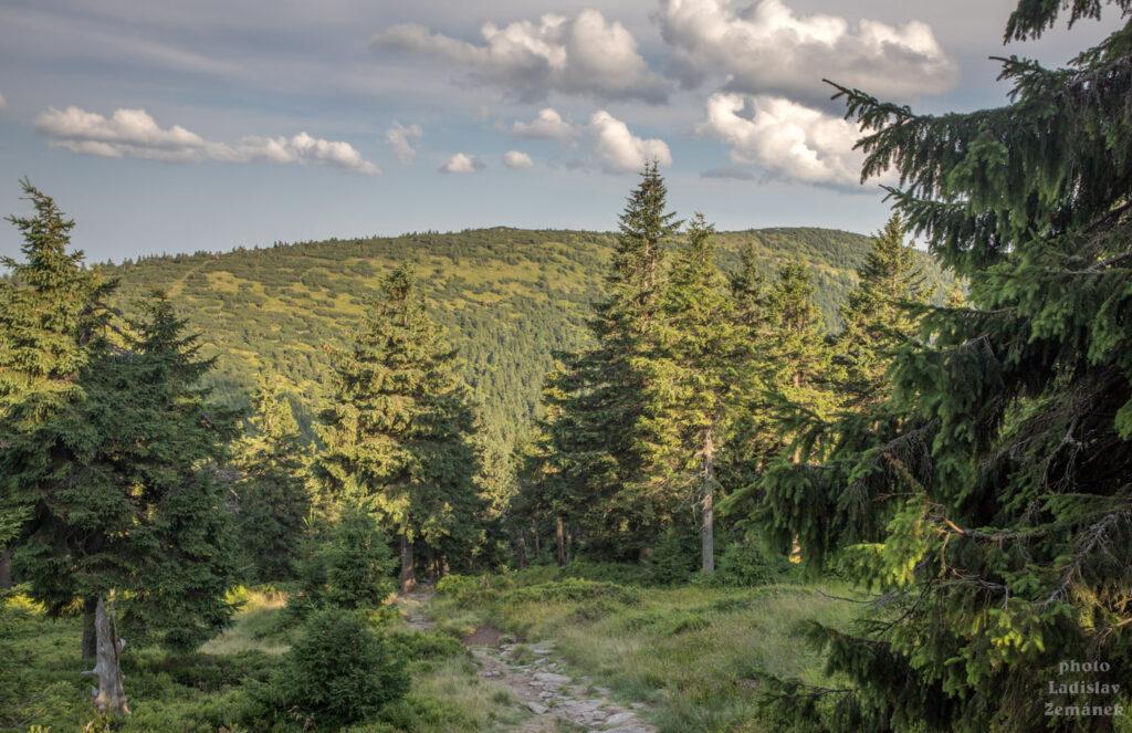 cesta z Keprníku na Červenou horu