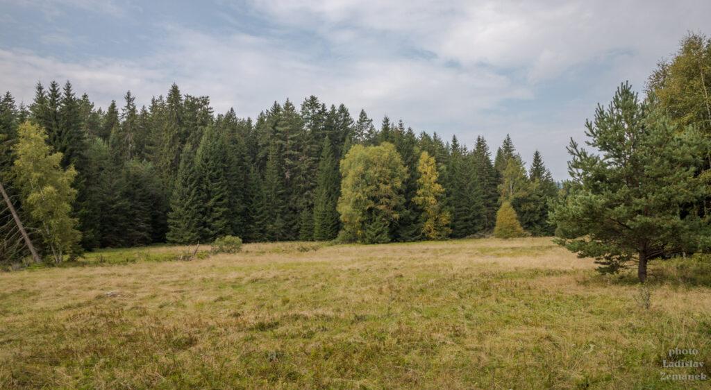 Údolí Jezerního potoka
