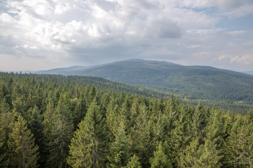 Rozhledna Moldaublick - výhled