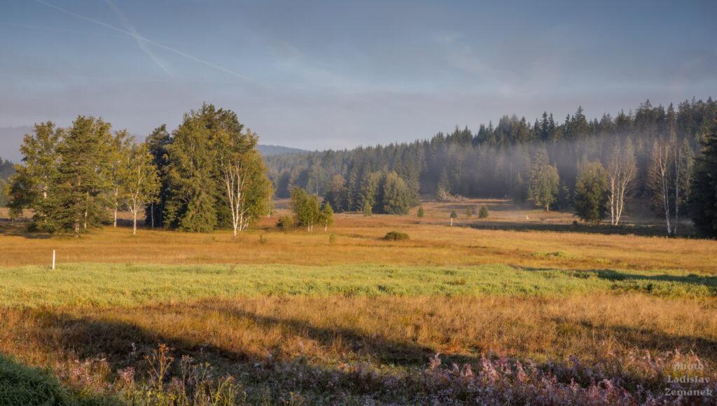 Podzimní mlha na Šumavě
