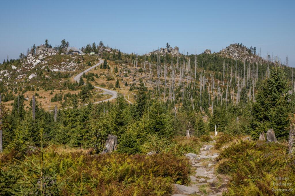 hřebenovka na Trojmeznou - výhled na Třístoličník