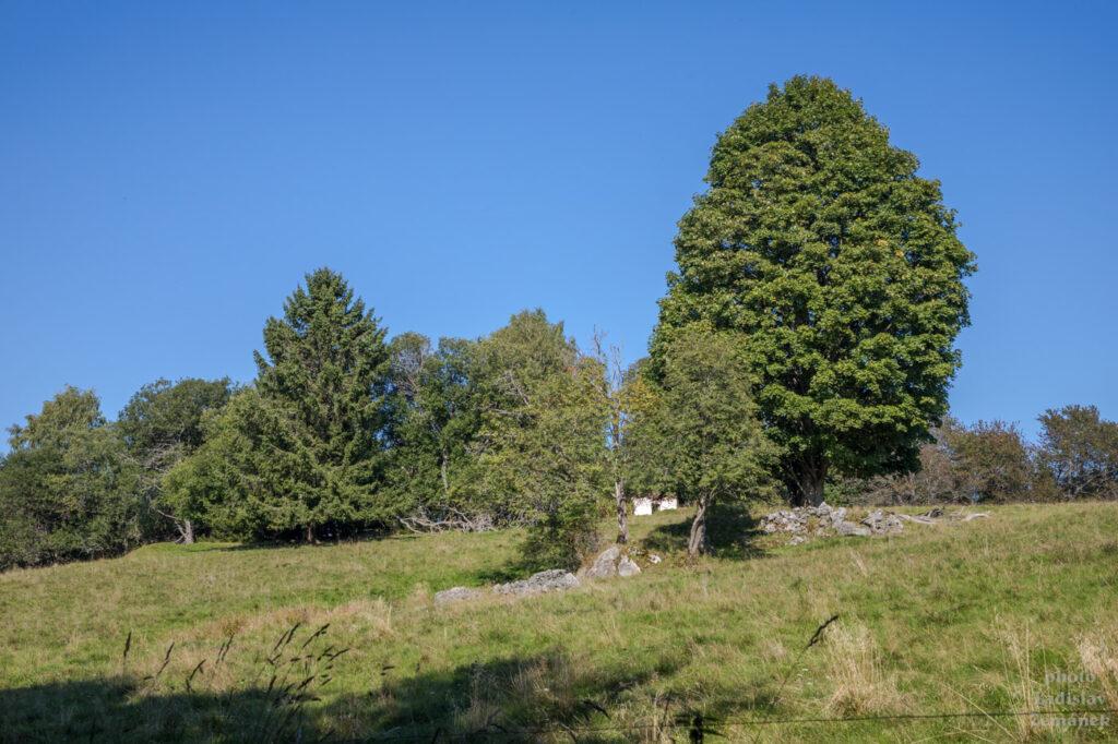 Šumava - bývalá Krásná Hora a okolí