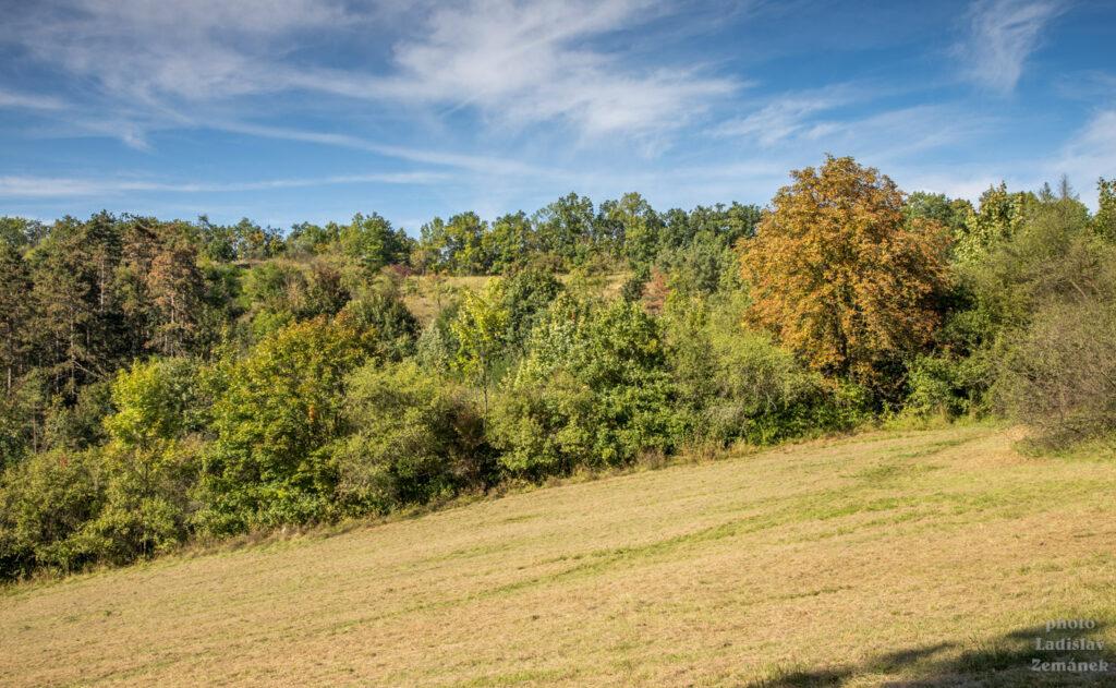 podzimní Prokopské údolí